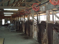 Shearers' stations at historic woolscour, Blackall
