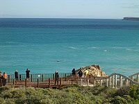 Whale viewing platform at Head of the Bight