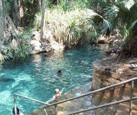 Thermal pool at Mataranka Homestead