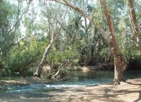 Stevie's Hole, Elsey National Park