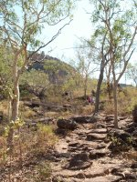 Walking track to lookout, Nourlangie, Kakadu N.P.